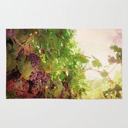 Vineyard Vines II Rug