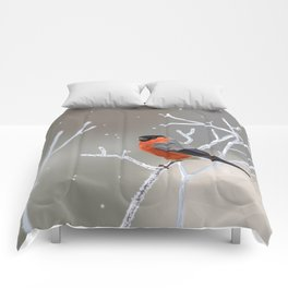 Safe transitions! // (polygonal bull-finch) Comforters
