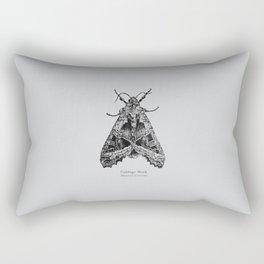 Cabbage Moth [Mamestra brassicae] Rectangular Pillow