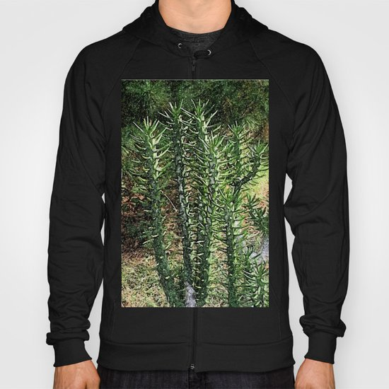 Green cactus in the garden digital painting Hoody