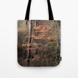 Autumn impression Tote Bag