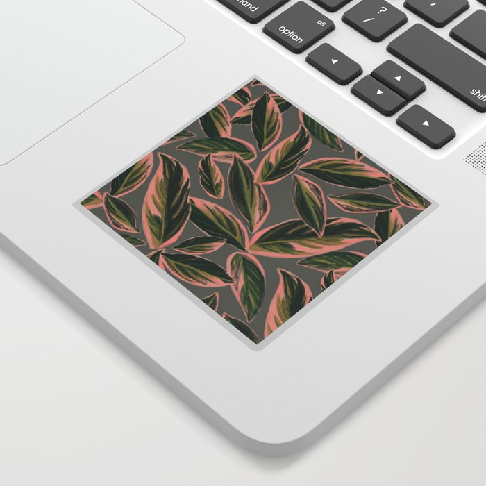Calathea Leaves Pattern- Pink Green Gray Sticker