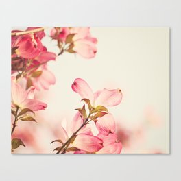 Dogwood Spring Flower Photography, Pink Coral Salmon, Floral Nature Tree Branch, Blossoms Canvas Print