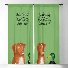 Nova Scotia Duck Trolling Retriever (Green) Blackout Curtain