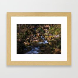Myrafalls in lower Autria Framed Art Print