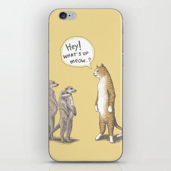 Cat & Meerkats iPhone & iPod Skin