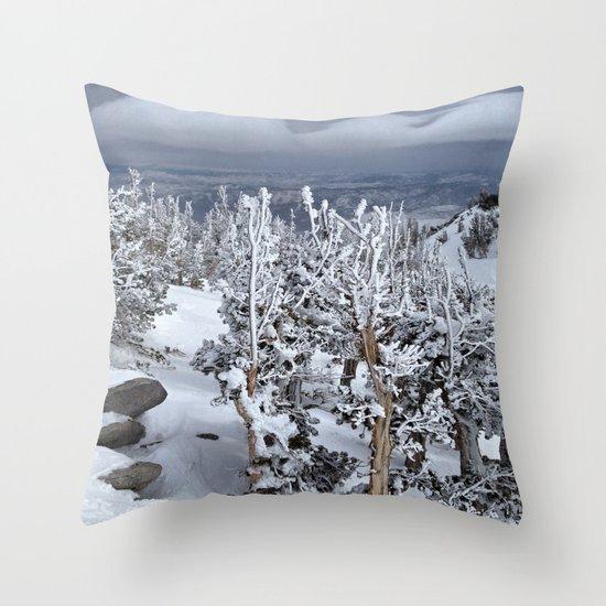 Mt Rose Throw Pillow