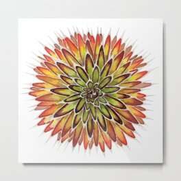 Autumn Agave Metal Print