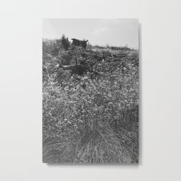 Battery East Trail, SF, CA Metal Print