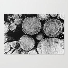 Natural Textures Canvas Print