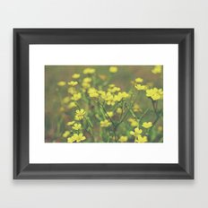 Hello Buttercup! Framed Art Print