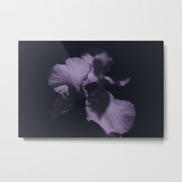 Flower in the Dark Metal Print