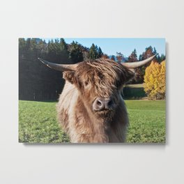 Cute Highland Cow #2 #wall #art #society6 Metal Print