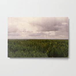 Forest and sky Metal Print