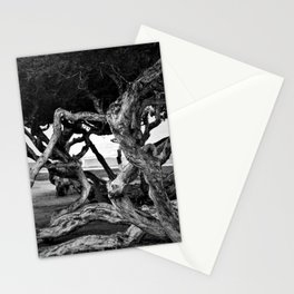 Curvy trees in the park Stationery Cards