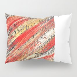 Multicolor ign eiss Pillow Sham
