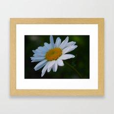 Photo 1 Framed Art Print