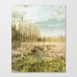 Peace and Solitude.   Canvas Print