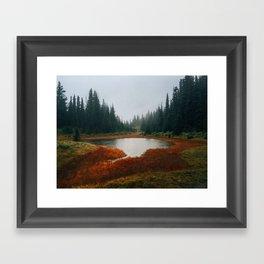 Quiet Meadow Framed Art Print