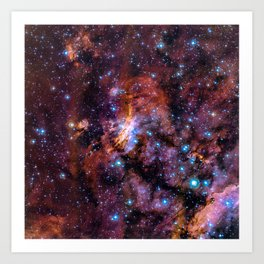 The Prawn Nebula Art Print