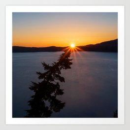 Sunset Tree Top Art Print