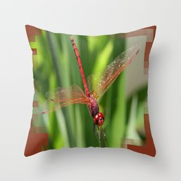Red Skimmer or Firecracker Dragonfly Closeup Throw Pillow