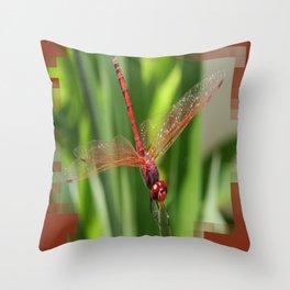 Red Skimmer or Firecracker Dragonfly Closeup Throw Pillow