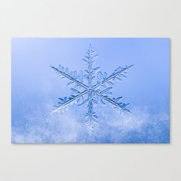 Snowflake in a Flurry Canvas Print