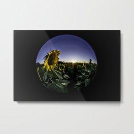 A fisheye view of field of sun flowers  Metal Print