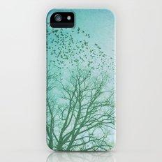 The Birds Slim Case iPhone (5, 5s)