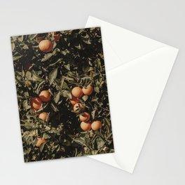 Orange Citrus Fruit Tree Stationery Cards