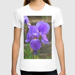 Beauty Of Summer T-shirt