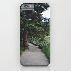 Banff iPhone 6s Slim Case