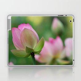 Lotus flowers Laptop & iPad Skin