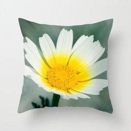 White Spring Throw Pillow