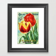 Antique Tulips Framed Art Print