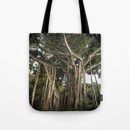 Banyan Tree at Bonnet House Tote Bag