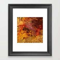 Dehiscence 12 Framed Art Print