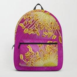 Prairie Sunburst Backpack