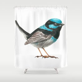 Fairy wren bird Shower Curtain