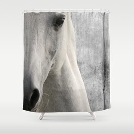 Horse Photography White Horse Close Up Modern Home Decor Gift for the Equestrian Art A833 Shower Curtain