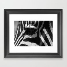 Zebra Eye Framed Art Print