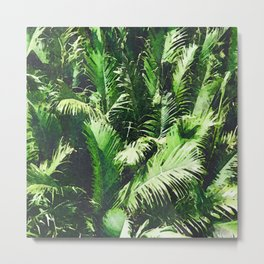 Rainforest Palm Trees Metal Print
