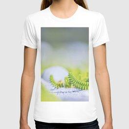 Minimal nature Fine Art photography T-shirt