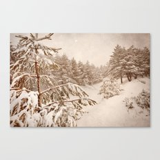 White forests. Vintage. Canvas Print