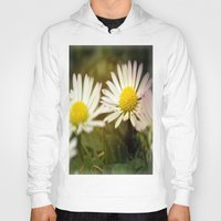 daisies Hoodies featuring Daisies by LoRo  Art & Pictures