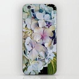 Beautiful hydrangea iPhone Skin