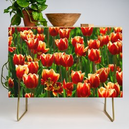 Red Tulips Credenza