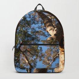 Scribbly Gum Tree, Muogamarra Reserve, Sydney Backpack