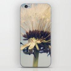 Skyduster iPhone & iPod Skin